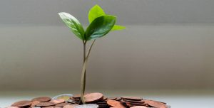 seedling sprouting from pile of coins